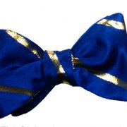 Navy Blue and Gold-381